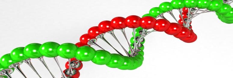 Belegging aandelen biotech Trend Invest