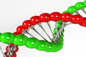 Biotech populaire trend bij beleggers Trend Invest