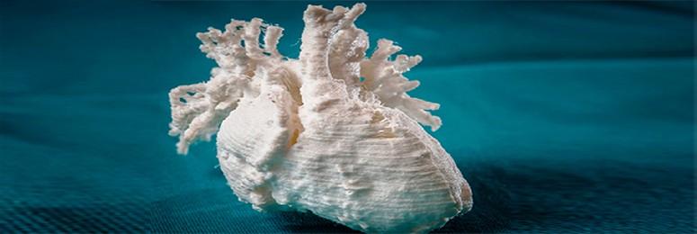 Medische toepassing 3D printing - Trend Invest