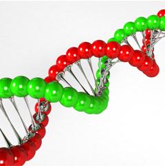 Beleggen in de Trend Biotech